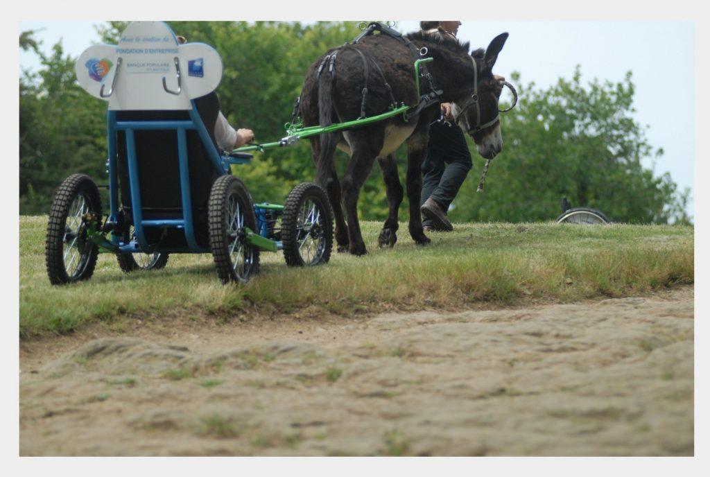Cariane fauteuil tracté par un âne